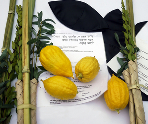 THE FOUR SPECIES OF SUKKOT © Arim44 | Dreamstime.com